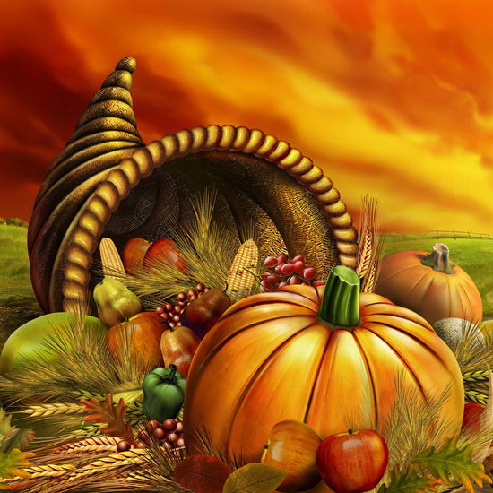 Free Thanksgiving Wallpapers for iPad: Bumper Harvest 10