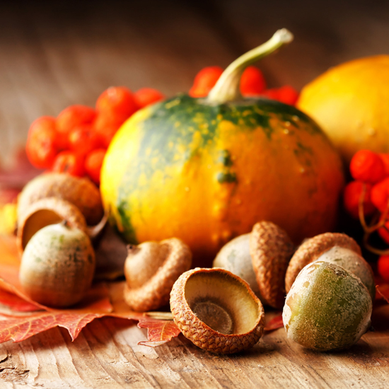 Free Thanksgiving Wallpapers for iPad: Bumper Harvest 12