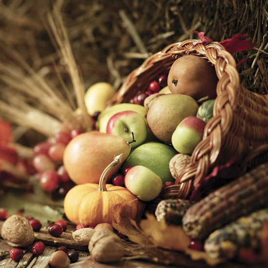Free Thanksgiving Wallpapers for iPad: Bumper Harvest 14