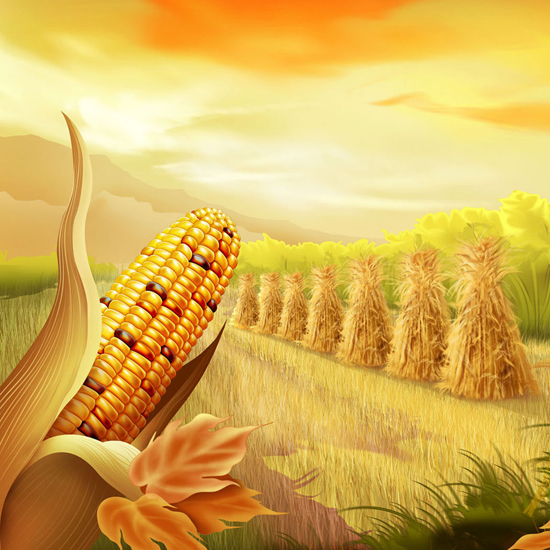 Free Thanksgiving Wallpapers for iPad: Bumper Harvest 6
