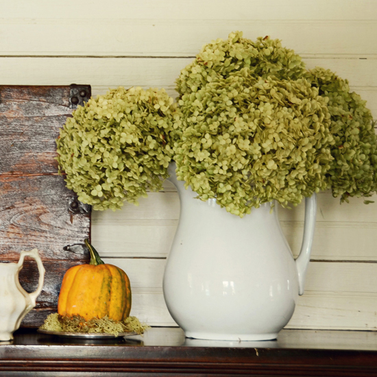 Free Thanksgiving Wallpapers for iPad: Table Decorations 16